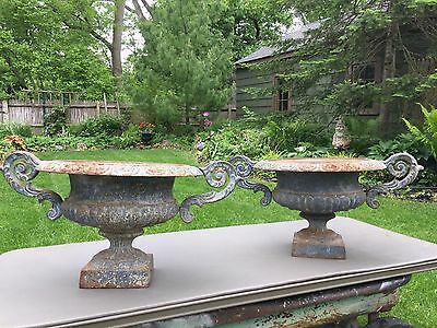 Pair Of French Cast Iron Planters Urns Jardiniere
