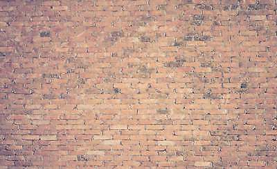 WALL MURAL PHOTO WALLPAPER XXL Brick Wall House Texture Weathered (JD-1264WS)