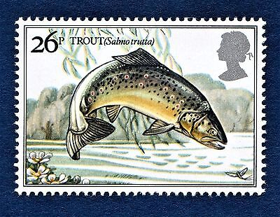 GB Brown Trout / Salmo trutta /Fish /  Fly Fishing on a Stamp - U/M 13