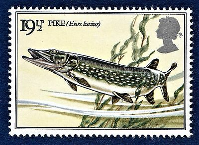 GB Northern Pike / Esox lucius /Fish / Fishing on a Stamp - U/M 13
