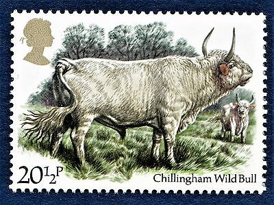 GB Chillingham Wild Bull/Cattle Breed/Northumberland/ on a Stamp - U/M 13