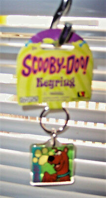 New Collectible Scooby-Doo Cartoon Network 2-Sided Square Lucite Key Ring