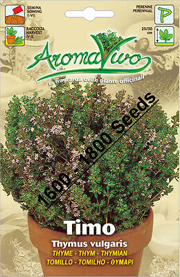 Thyme Herb Seeds (1600 - 1800 seeds) Best Quality Very Fresh seeds. Timo Thym