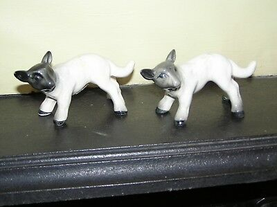2 x Melba Ware Standing Lambs with dark heads - sheep - very good condition