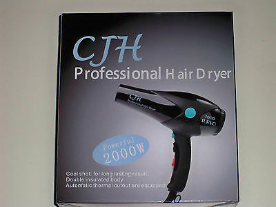 Professional Hair Dryer - Free P&P