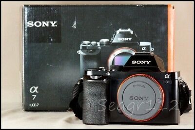 Sony Alpha A7 FE Mount 24.3 MP Digital SLR Camera (No Lens) Only 8k Clicks