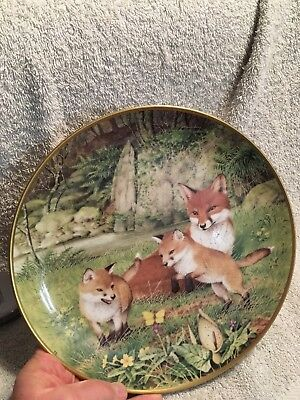 Peter Barrett Woodland Year Red Foxes The Butterfly Chase In May Plate