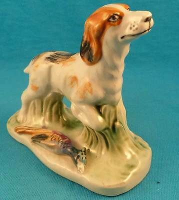 Vintage setter or Brittany spaniel hunting dog with pheasant bird