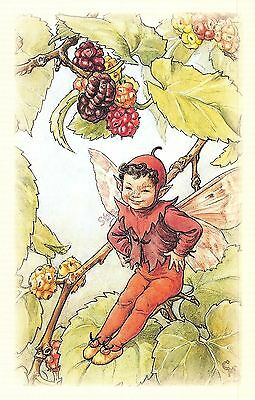 Flower Faires Postcard Cicley Mary Barker The Mulberry Fairy Lot1