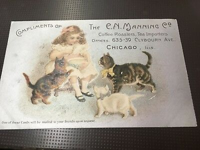 Antique Coffee / Tea  & Cats Post Card Chicago