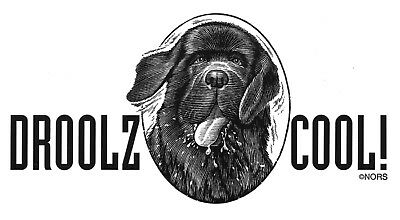 Xmas! 2 Newfoundland Dog FUNNY Decals- DROOLS COOL- Newfie Dog Rescue- FREE S&H
