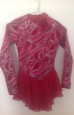 Jerry's Figure Skating Costume Dress Ice Skating Size 12-14 Great Christmas Gift