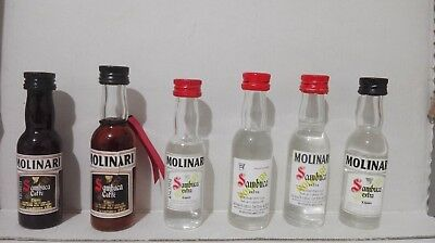 Mignon liquori  Sambuca MOLINARI miniature 6 differenti 30 ml
