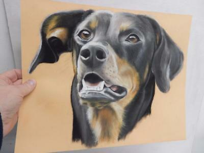 OLD DRAWING art PASTEL portrait of a dog