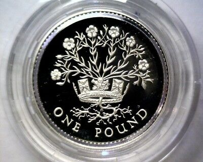 1986 United Kingdom Silver Proof Pound Coin Ireland Flax Original Packaging