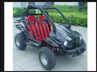 GO KART DUNE BUGGY ADULT SIZE 150cc 2 SEATER FREE SHIPPING BOXING DAY SALE