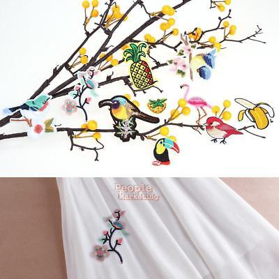 10pc Bird Fruit Applique Clothing Embroidery Patch Sticker Iron On Sew Cloth DIY