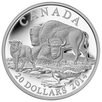Canada $20 Dollars Silver Proof Coin, 1 oz 2014 the Bison (A Family at Rest)