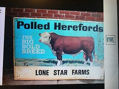 """POLLED HEREFORD FARM SIGN """"Your Name"""" LG 34x59 VINTAGE LOOK ANTIQUE ADVERTISING"""