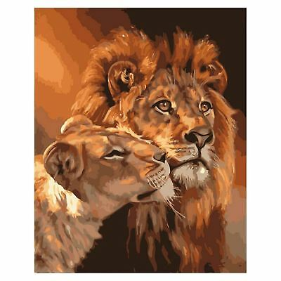 Lion Kings DIY Coloring Oil Painting Paint By Numbers Kits Drawing Paint On R0C5