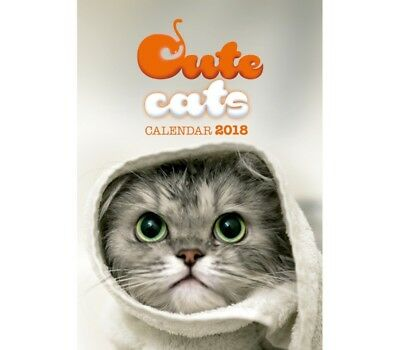 Cute Gatos Calendario Calendar 2018 - calendario de pared Dolci Gatitos
