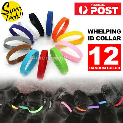 12x/24x Whelping ID Collar Bands Pet Puppy Dog Kitten Identification Collar Tags