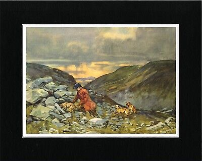 Border Terrier And Huntsman Lovely Vintage Style Dog Art Print Ready Matted