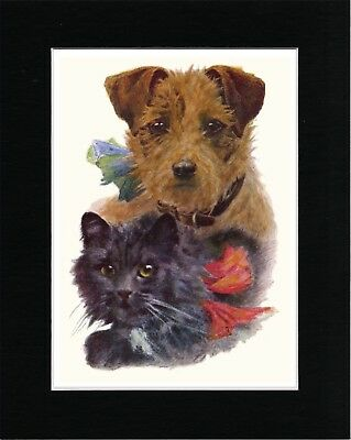 Border Terrier And Cat Lovely Vintage Style Dog Art Print Matted Ready To Frame