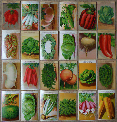 24 Different Vintage FRENCH Vegetable Seed Packet Labels 1920's ORIGINAL STOCK