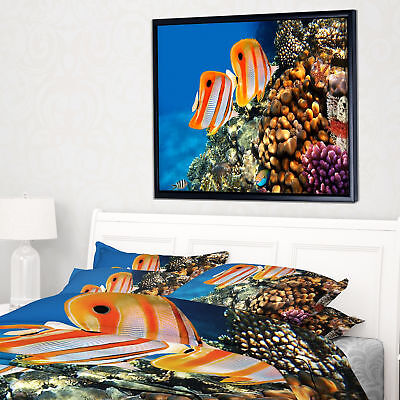 Designart 'Pair of Copper Band Butterfishes' Oversized Animal Framed Canvas Art