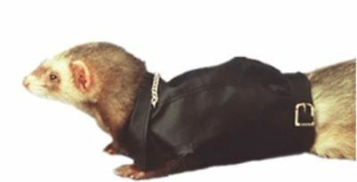 Marshall Pet Ferret Toy Dog Fashion Leather Biker Jacket with Silver Chain