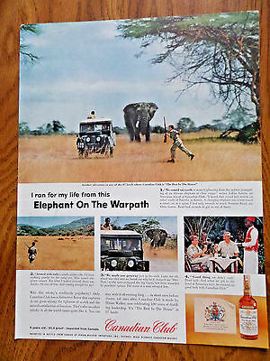 1958 Canadian Club Whiskey Ad Elephant on the Warpath Safari Nairobi Kenja
