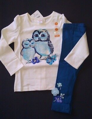 NWT Gymboree Butterfly Garden Owl Tee and Leggings Sizes 18-24 months 2T 3T  4T