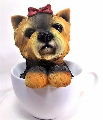 Yorkshire Puppy in a Tea Cup Feline Home Decor Figurine