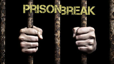 Escape Room Design - Prison Theme - Prison Break - Business Opportunity