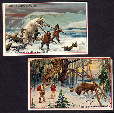 Polar Bear Hunt c1900 Alaska Eskimo Moose Ski Greenland Puro 2 Advertising Cards