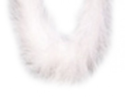 KnorrPrandell 2543799 Feather Boa, 1 Metre Long, White