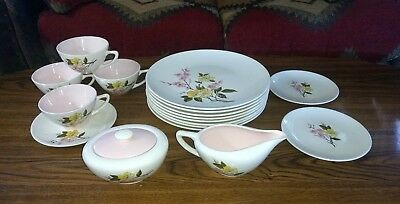MCM 17 Pc Edwin Knowles BLOSSOM TIME Styled by KALLA Oven Proof Dinnerware 1950s