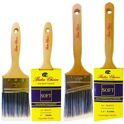 New Paint Professional wall Brush Set with cover, 2 Piece 3-Inch and 2.5-Inch