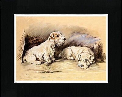 Sealyham Terrier Dogs Sat In A Chair Vintage Style Dog Art Print Ready Matted