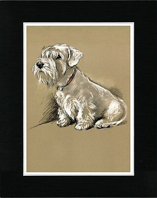 Sealyham Terrier Seated Dog Vintage Style Dog Art Print Matted Ready To Frame