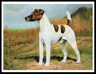 Smooth Fox Terrier Standing Dog Lovely Vintage Style Dog Art Print Poster