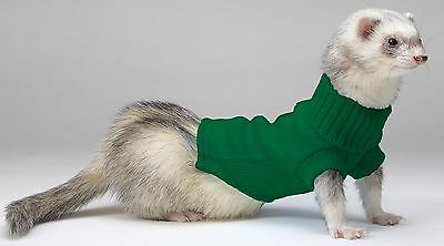 Marshall Ferret Sweater - 3-5 lb Green