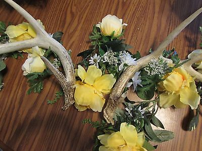 Deer Antler Pair of 2  Naturally Distressed 4/4 Point Wedding Decoration Lar A15