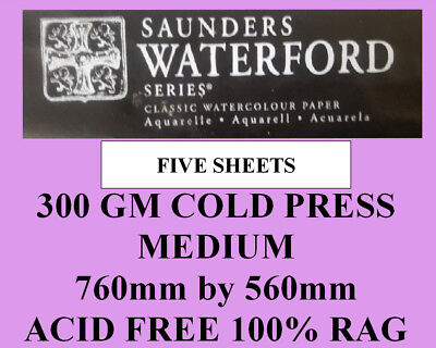 SAUNDERS WATERFORD WATERCOLOR PAPER 300gm MEDIUM 760 by 560mm 5 sheets 002A