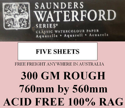 SAUNDERS WATERFORD WATERCOLOR PAPER 300gm ROUGH 760 by 560 FIVE SHEETS 001A