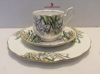 Royal Albert Tea cup saucer And Plate fine bone china Snow Drop Flowers Of Month