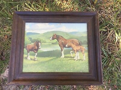 Vintage 1973 Clydesdale Horse Foal Print Framed Rare Unique Art Mountains Fields