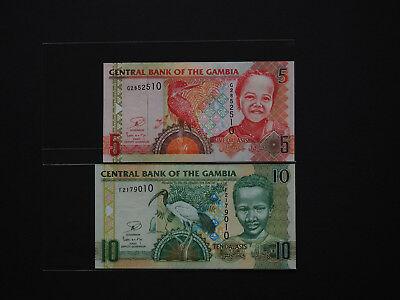 Gambia Banknotes set of two  5,10  Dalasis Bird Series quality notes   MINT UNC