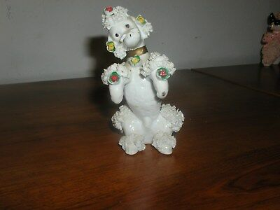 White Spaghetti Poodle With Flowers - Looks Great
